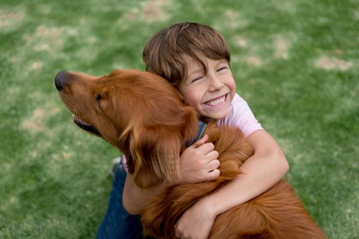 hayvanlara şiddet psikolojisi