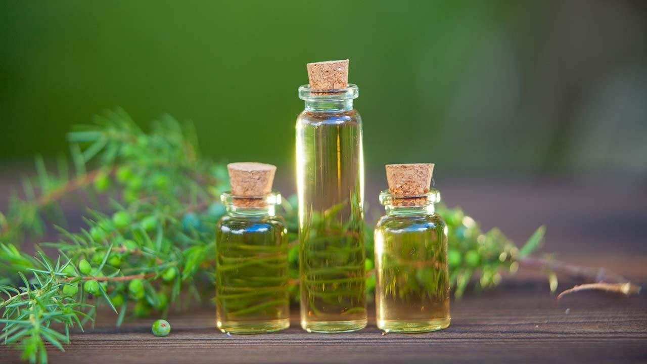 Çay ağacı yağının saç ve cilt için faydaları: Nasıl kullanılır?