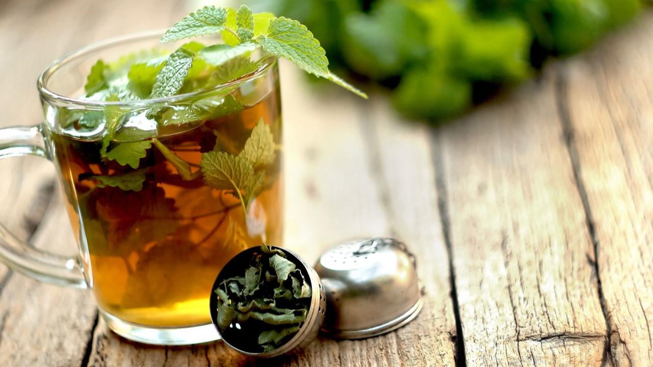 Melisa çayı faydaları nelerdir? Neye yarar? Kimler tüketmemeli?
