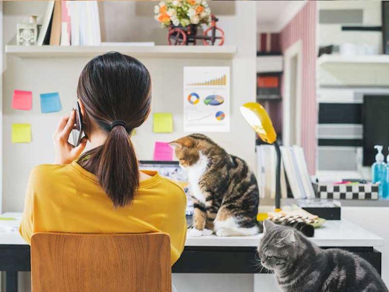 Evde Çalışırken Verimliliğinizi Artıracak 8 Öneri