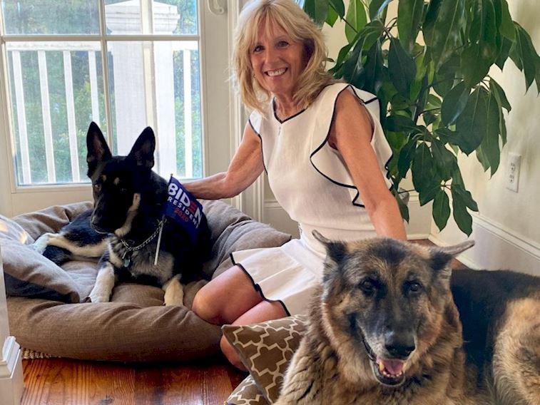 Beyaz Saray'ın ilk kurtarılmış köpeği: Major!